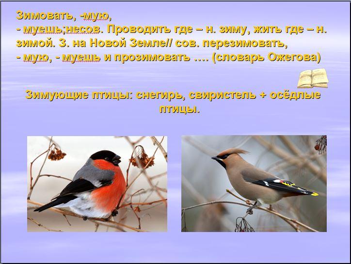 hello_html_m83ab051.jpg