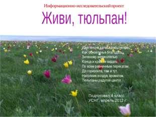 Подготовил:4 класс УСНГ, апрель 2012 г. Идет весна калмыцкой степью, Как обно