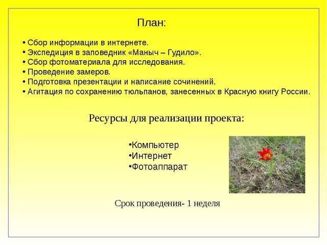 План: Сбор информации в интернете. Экспедиция в заповедник «Маныч – Гудило»....