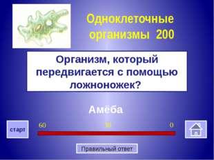 Капсула Как называется дополнительный защитный слой слизи, расположенный пов