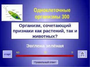 Отсутствует ядро Почему бактерии относятся к прокариотам Бактерии 400 0 30 6