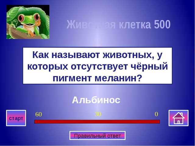 Медведь Какое животное изображено на гербе Пермкого края? Многоклеточные орг...