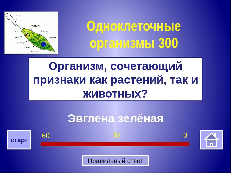 Отсутствует ядро Почему бактерии относятся к прокариотам Бактерии 400 0 30 6...