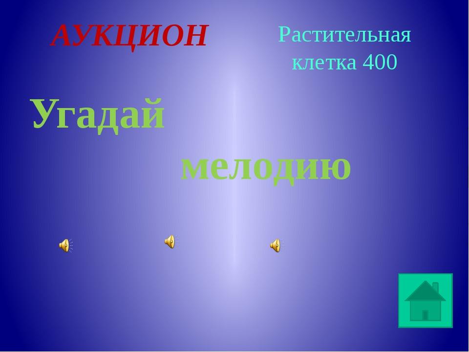 Дрожжи Какой гриб используют в хлебопечении? Одноклеточные организмы 400 0 3...