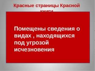 Красные страницы Красной книги Помещены сведения о видах , находящихся под уг
