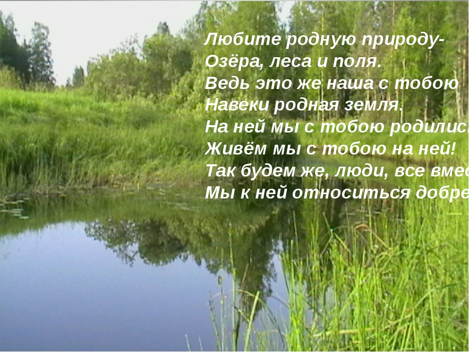 Любите родную природу- Озёра, леса и поля. Ведь это же наша с тобою Навеки ро...
