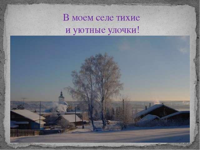 В моем селе тихие и уютные улочки!