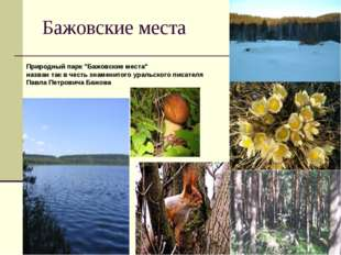 """Бажовские места Природный парк """"Бажовские места"""" назван так в честь знаменито"""