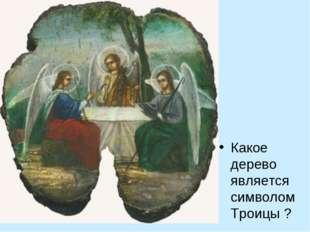 Какое дерево является символом Троицы ?