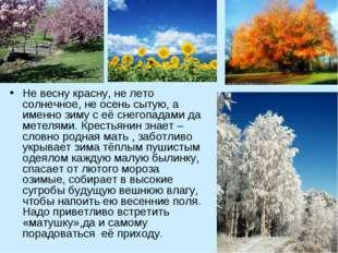 Не весну красну, не лето солнечное, не осень сытую, а именно зиму с её снегоп
