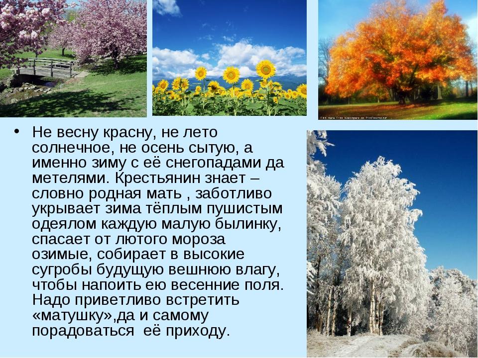 Не весну красну, не лето солнечное, не осень сытую, а именно зиму с её снегоп...