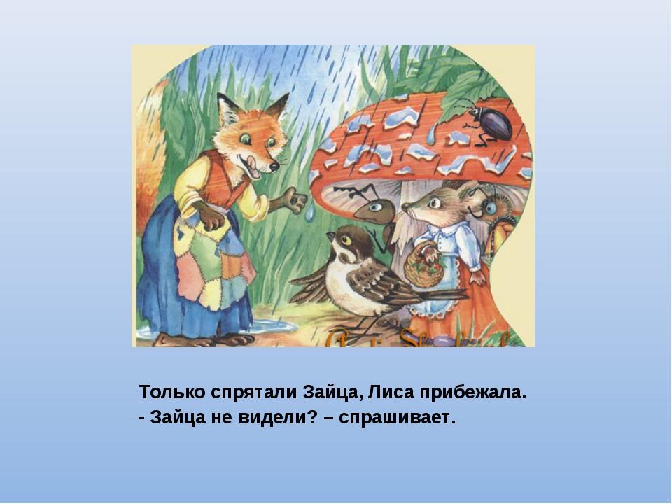 Только спрятали Зайца, Лиса прибежала. - Зайца не видели? – спрашивает.