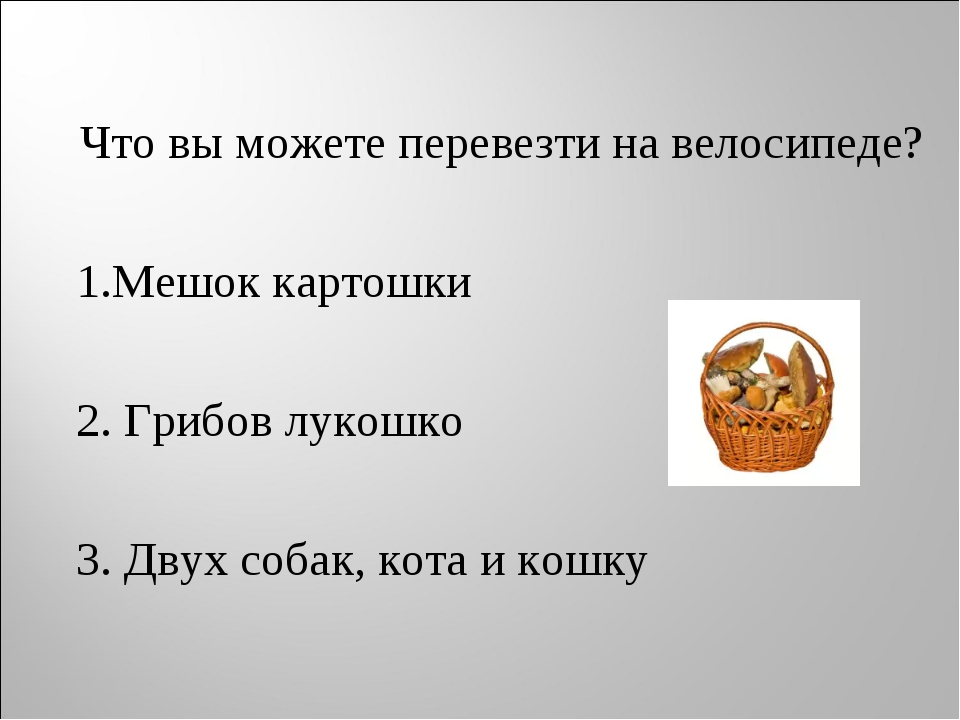 Что вы можете перевезти на велосипеде? 1.Мешок картошки 2. Грибов лукошко 3....