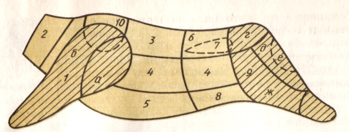 Схема разделки туши говядины: - Картинка 12607/21