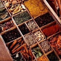 Виды и классификация пряностей. Пряные овощи, пряные травы