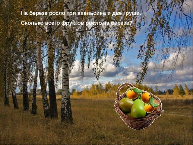 На березе росло три апельсина и две груши. Сколько всего фруктов росло на бер...