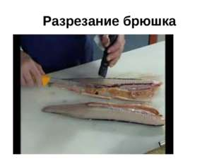 Разрезание брюшка
