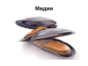 Мидии