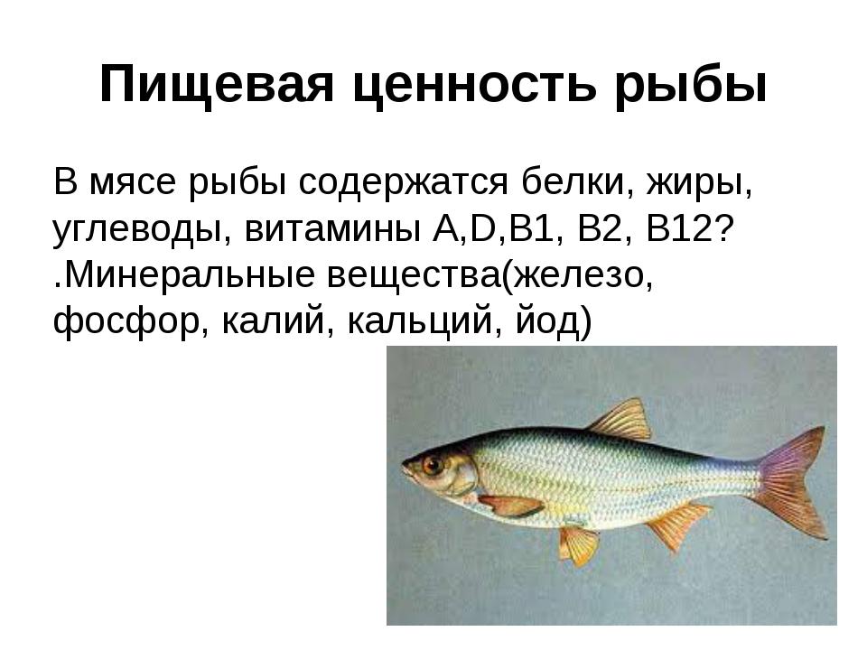 Пищевая ценность рыбы В мясе рыбы содержатся белки, жиры, углеводы, витамины...