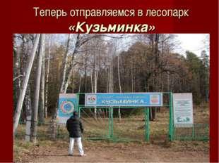 Теперь отправляемся в лесопарк «Кузьминка»