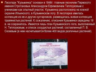 """Лесопарк """"Кузьминка"""" основан в 1848г. главным лесничим Пермского имения Строг"""