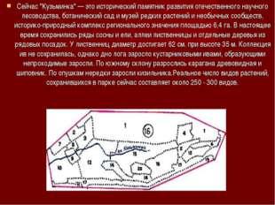 """Сейчас """"Кузьминка"""" — это исторический памятник развития отечественного научно"""