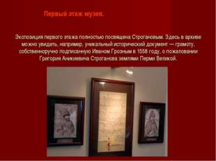 Экспозиция первого этажа полностью посвящена Строгановым. Здесь в архиве можн