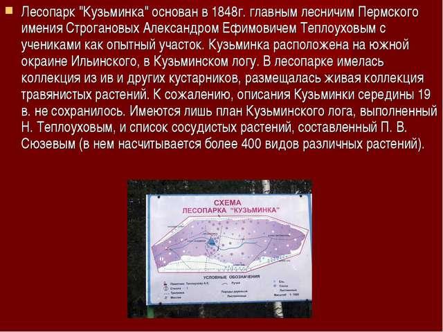 """Лесопарк """"Кузьминка"""" основан в 1848г. главным лесничим Пермского имения Строг..."""