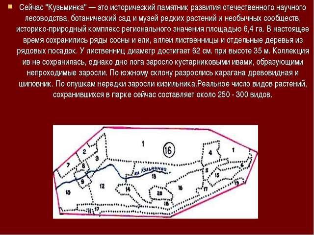 """Сейчас """"Кузьминка"""" — это исторический памятник развития отечественного научно..."""