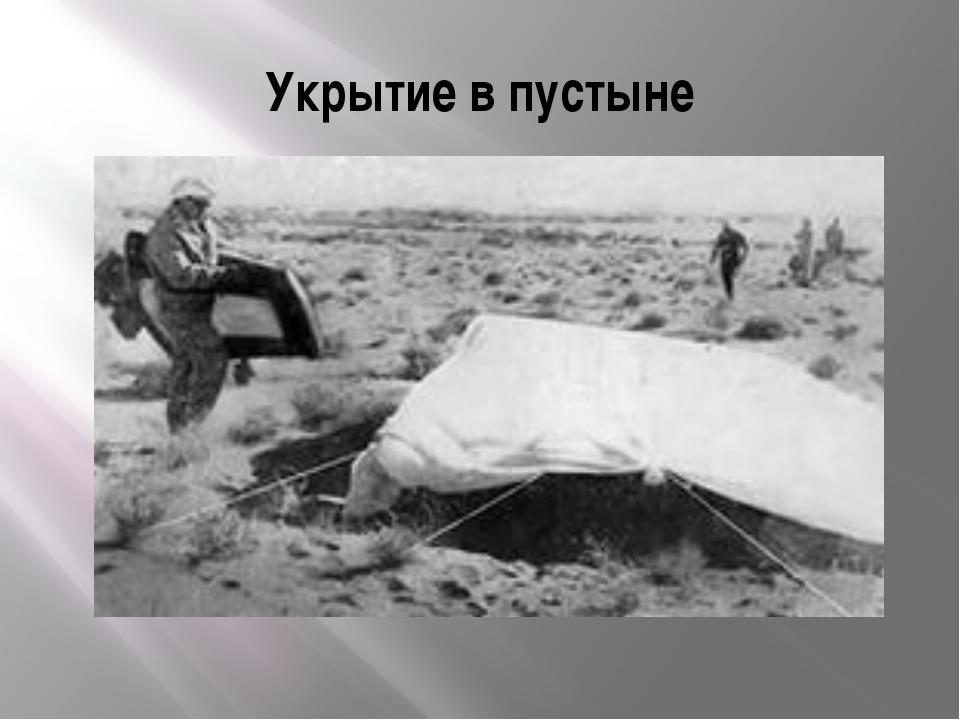 Укрытие в пустыне