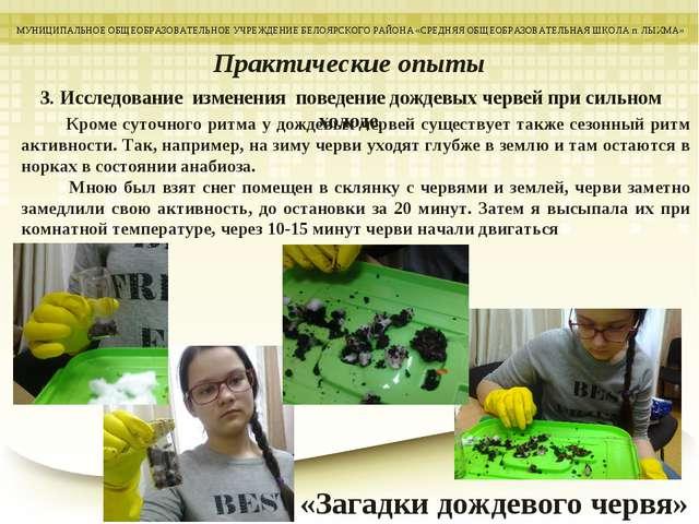 3. Исследование изменения поведение дождевых червей при сильном холоде. МУНИЦ...