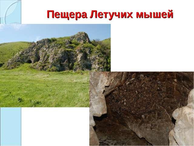 Пещера Летучих мышей