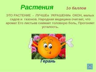 Растения 3о баллов Этот цветок неотделим от русской природы. С ранней весны