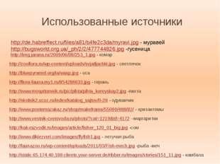 Использованная литература: Журналы: «Педсовет» №6 за 1999 год «Педсовет» №6 з