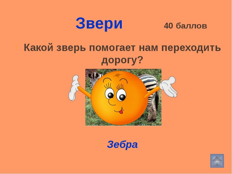 Использованные источники http://img.jarana.ru/2009/06/08/253_1.jpg - комар ht...
