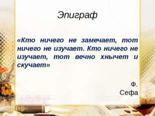 Эпиграф «Кто ничего не замечает, тот ничего не изучает. Кто ничего не изучает