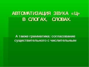 АВТОМАТИЗАЦИЯ ЗВУКА «Ц» В СЛОГАХ, СЛОВАХ. А также грамматика: согласование су