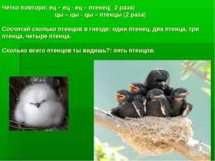 Чётко повтори: ец – ец - ец – птенец( 2 раза) цы – цы - цы – птенцы (2 раза)
