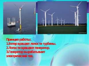 Принцип работы: 1.Ветер вращает лопости турбины. 2.Лопости вращают генератор.