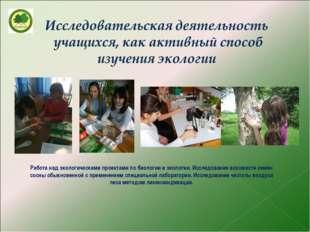 Работа над экологическими проектами по биологии и экологии. Исследование всхо