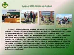 В рамках проведения Дня Земли в нашей школе прошла акция «Посади дерево». Са