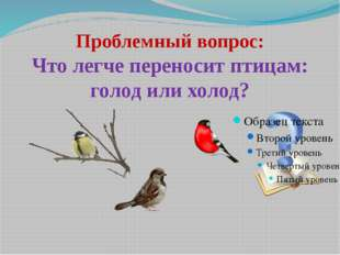 Проблемный вопрос: Что легче переносит птицам: голод или холод?