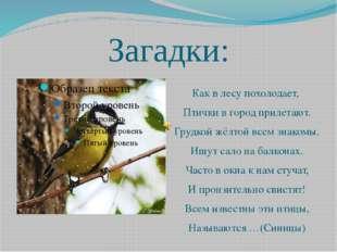 Загадки: Как в лесу похолодает, Птички в город прилетают. Грудкой жёлтой всем