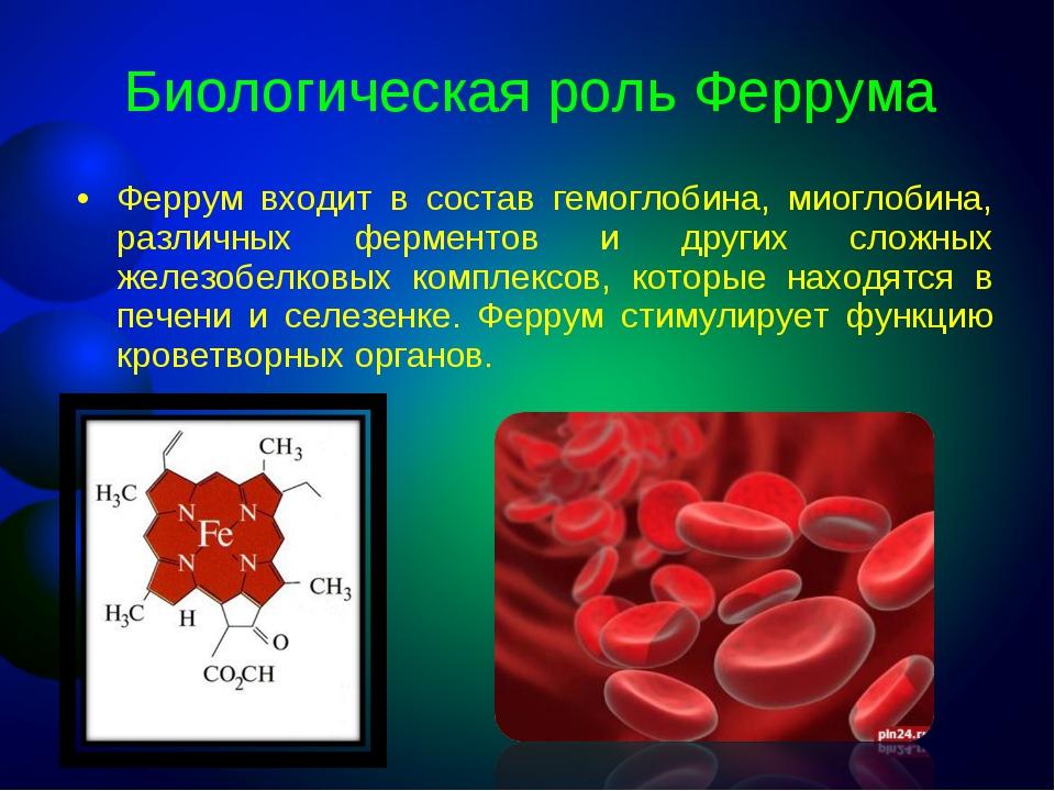Биологическая роль Феррума Феррум входит в состав гемоглобина, миоглобина, ра...