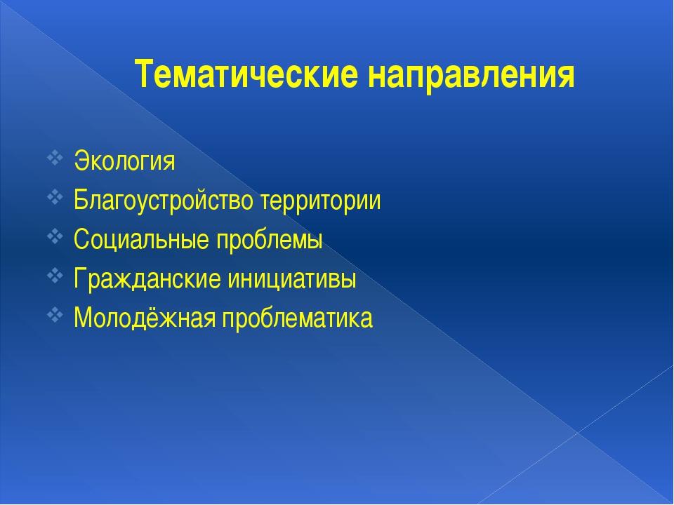 Тематические направления Экология Благоустройство территории Социальные пробл...