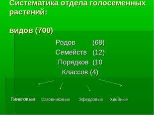 Систематика отдела голосеменных растений: видов (700) Родов (68) Семейств (12