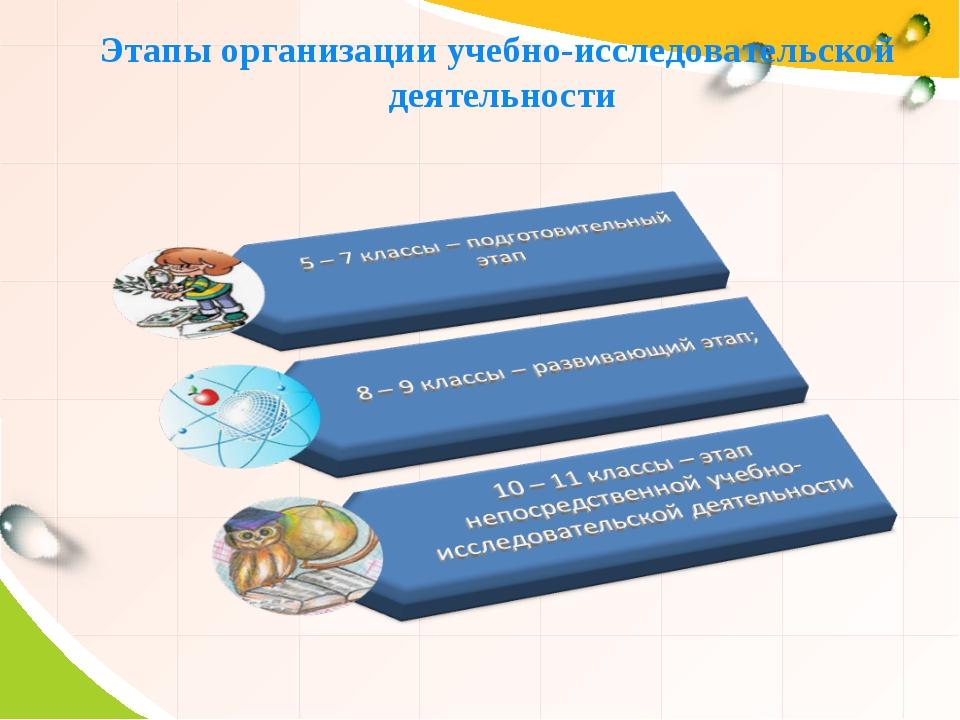 Этапы организации учебно-исследовательской деятельности