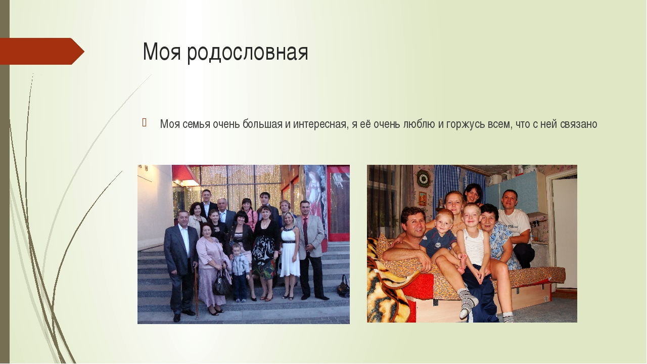 Моя родословная Моя семья очень большая и интересная, я её очень люблю и горж...
