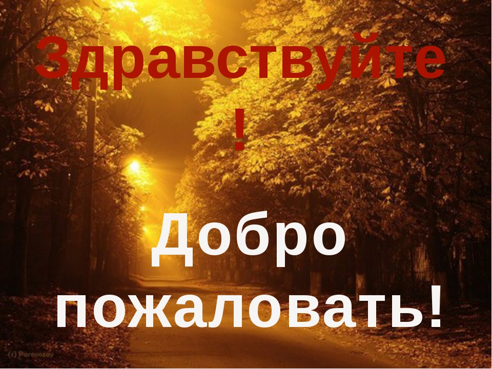 Здравствуйте! Добро пожаловать!