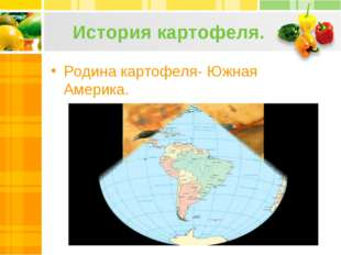 История картофеля. Родина картофеля- Южная Америка.